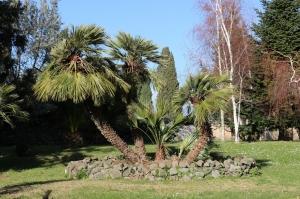 giardino_39.jpg