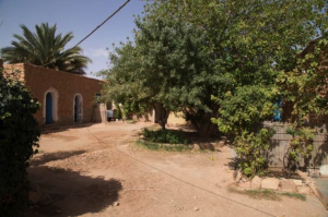 16_Cappuccini_in_Algeria.jpg